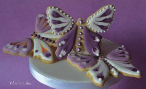 Motýlci 3+logo