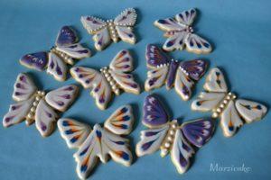 Motýli+logo