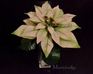 Vánoční hvězda bílá