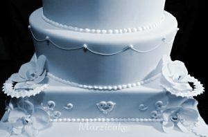 spodní čás dortu+logo