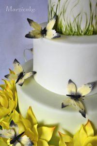 Strana dortu nikon+logo