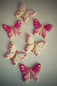 Motýlci retro+logo