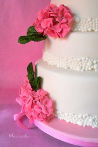 Část dortu+logo